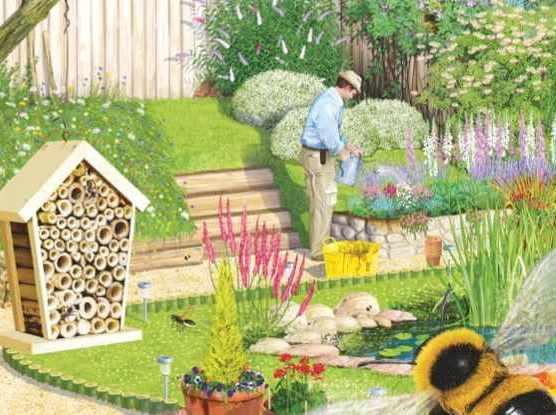 Bee friendly garden illustration