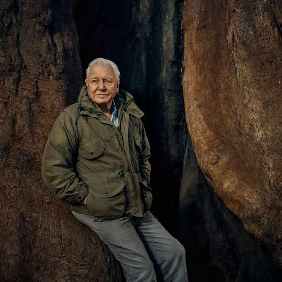 David Attenborough. © Sam Barker/BBC