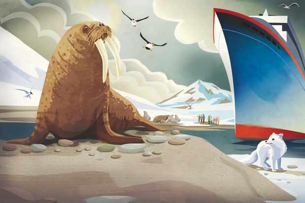 Arctic wildlife 1. Eric Smith