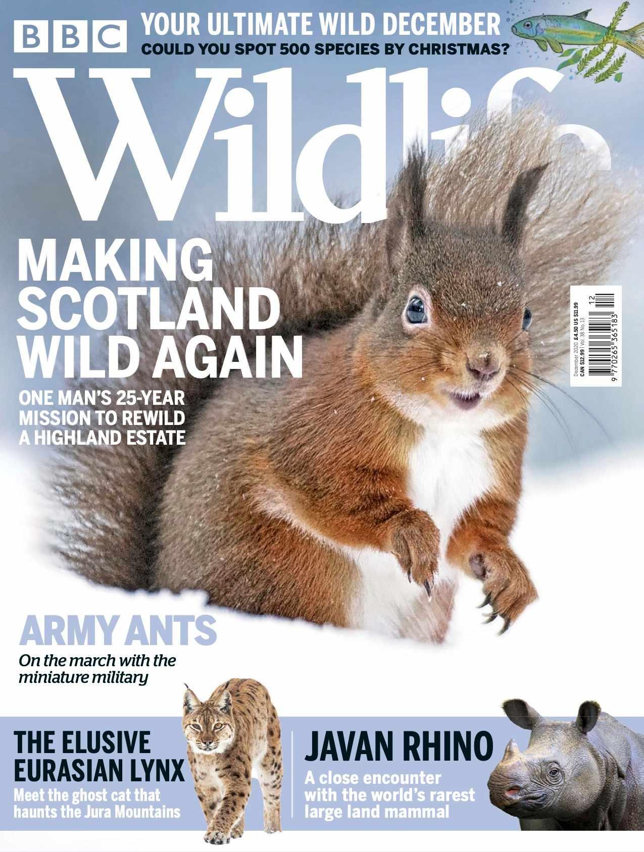 Dec cover