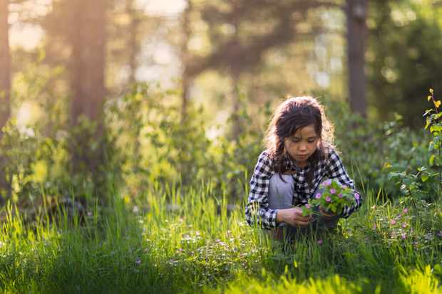 Greenery boosts children's immune systems