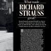 Strauss_feature2-15d7dce-f0cc328.jpg