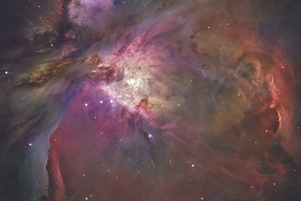 In the Orion Nebula, dust grains might have life-like properties. Image Credit: NASA