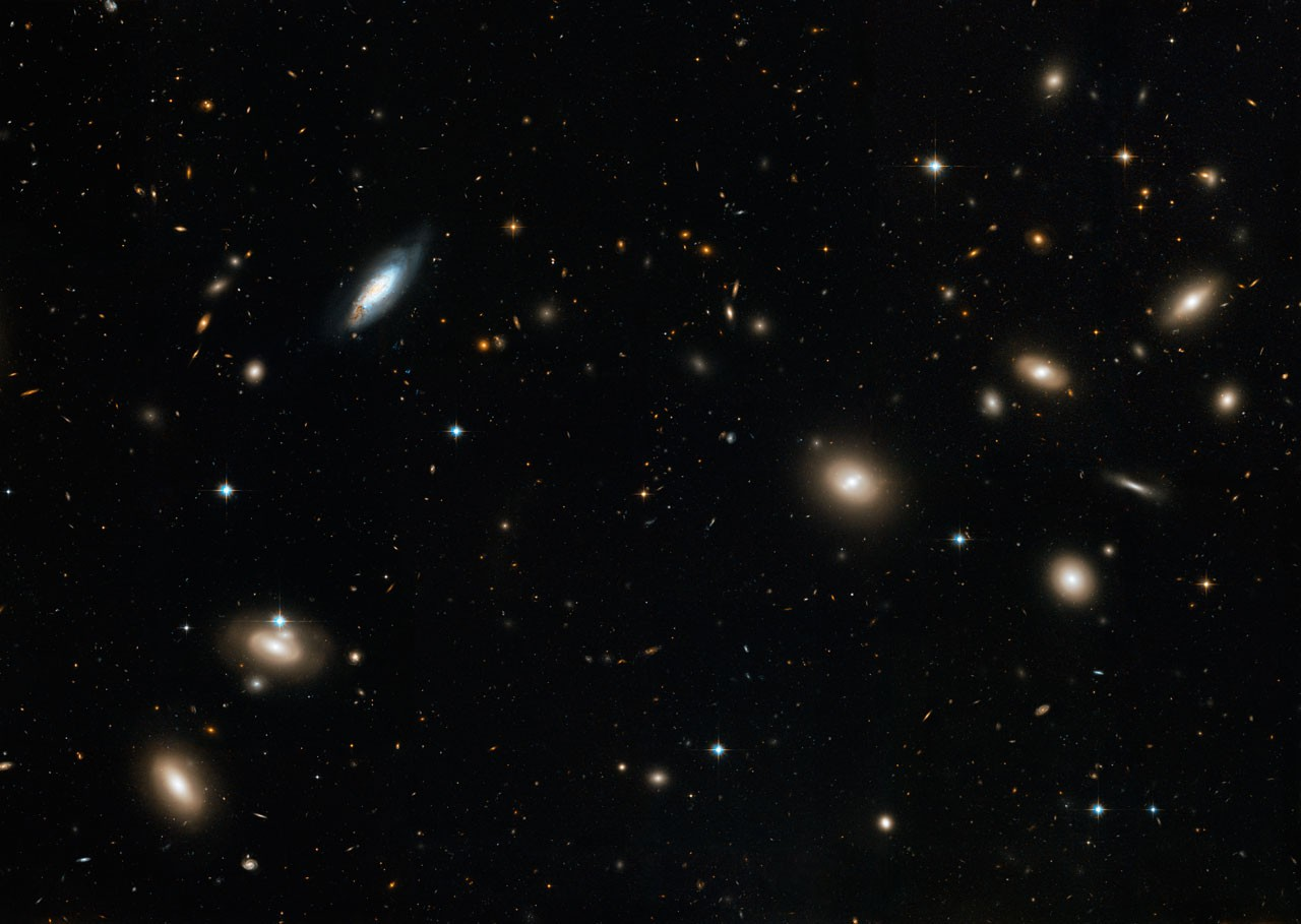 A large portion of the Coma Cluster as seen by the Hubble Space Telescope's Advanced Camera for Surveys.Credit: NASA, ESA, and the Hubble Heritage Team (STScI/AURA). Acknowledgment: D. Carter (Liverpool John Moores University) and the Coma HST ACS Treasury Team.