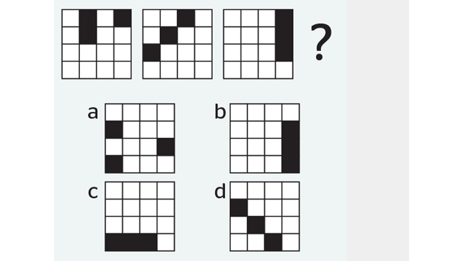 ISS puzzle 2