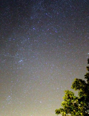 Perseid & Cassiopeia Alex Speed, Bedford, 13 August 2013. Equipment: Canon EOS 1100D DSLR camera.