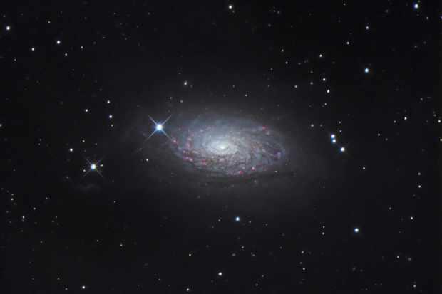 25-Ian-Dunbar-Messier-63-92bb56e