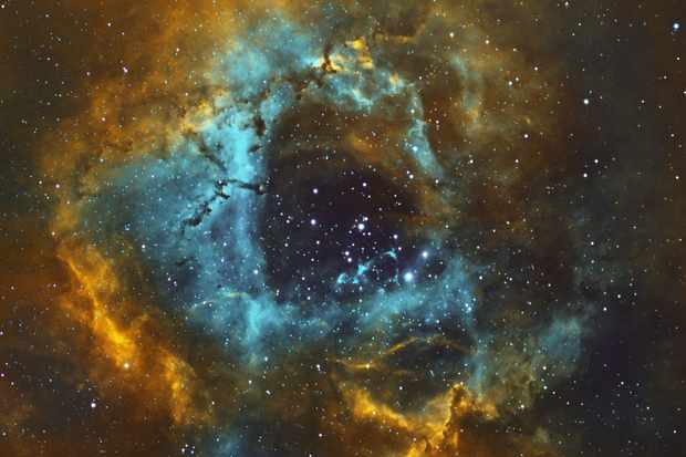 The Rosette Nebula, William Tan, Johor Bahru, Malaysia, ZWO ASI1600MM camera, Skyrover 110ED doublet len, iOptron ZEQ25 mount.