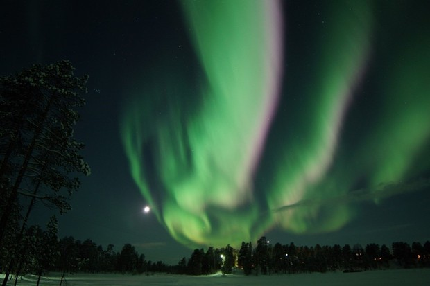 Pictures of the Aurora