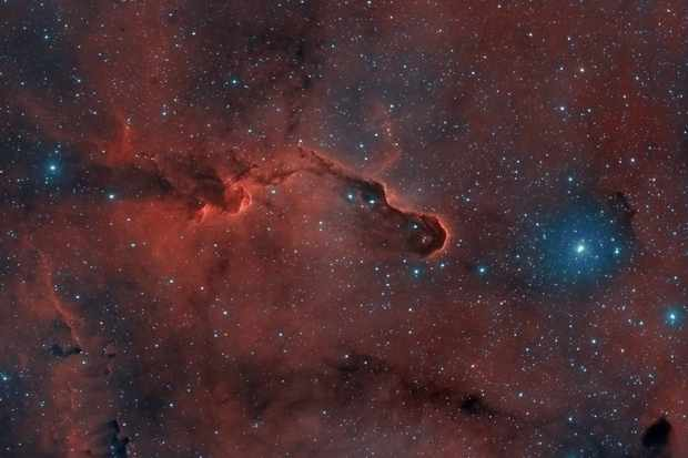 Pictures of the Elephant's Trunk Nebula