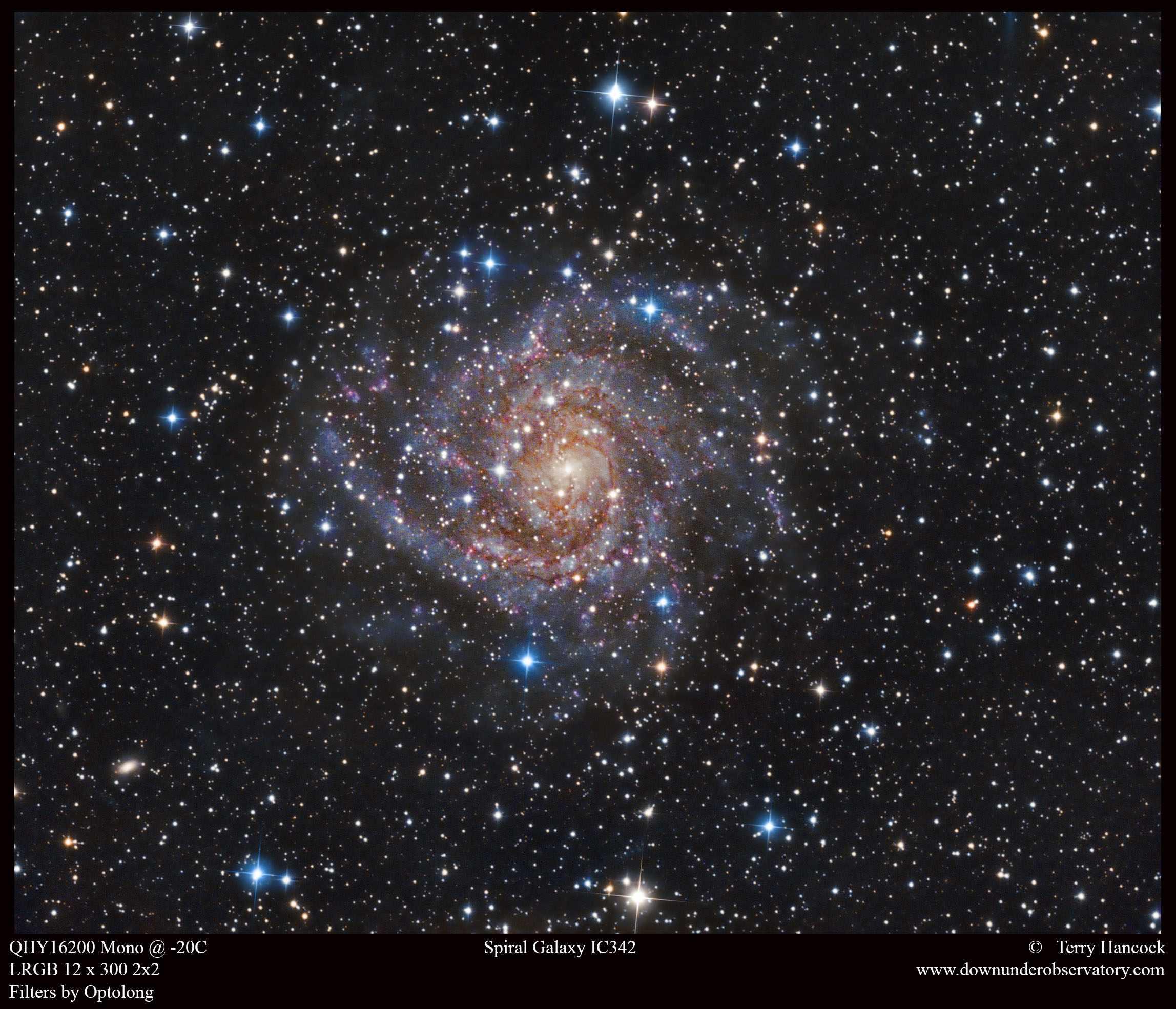 IC342_SEP24_12x300_LRGB_2x2_Terry-Hancock_med-283bfeb