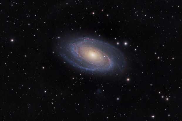 M81-FINAL-jpeg-7b1ba73
