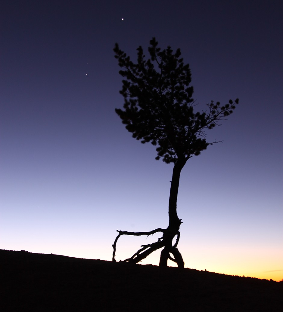 Jupiter and Venus around the Ballerina Tree, Bryce Canyon © Jamie Carter