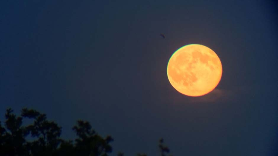 A Full Moon rising orange – a much underrated monthly event – shot using the Night Sky MiniScope