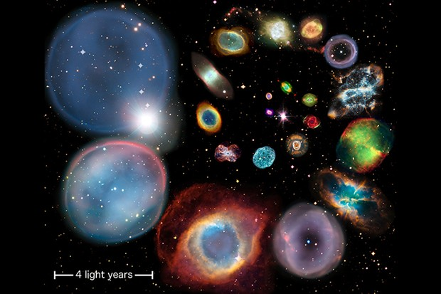 A collage showing 22 planetary nebulae arranged in order of physical size. Credit: ESA/Hubble & NASA, ESO, Ivan Bojicic, David Frew, Quentin Parker