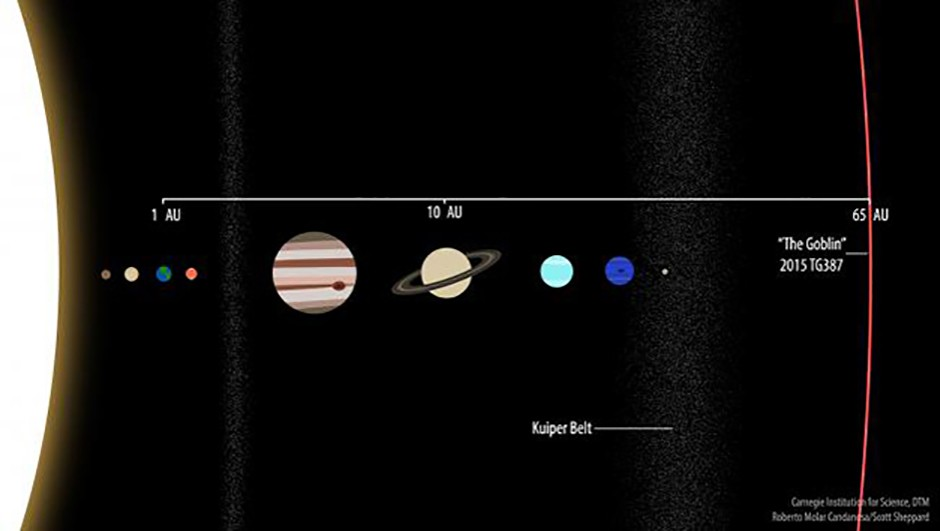 An illustration showing the orbit of newly-discovered dwarf planet 2015 TG387 with the planets of the Solar System. Credit: Roberto Molar Candanosa and Scott Sheppard, courtesy of Carnegie Institution for Science.