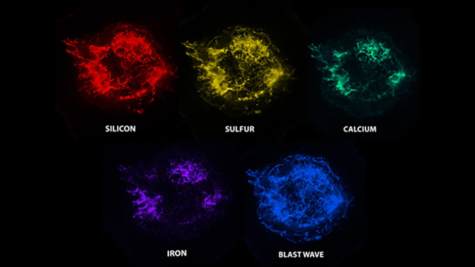 Images from NASA's Chandra X-ray Observatory reveal the location of different elements in Cassiopeia A. (Credit: NASA/CXC/SAO )