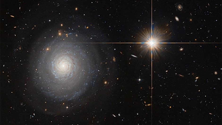 Hubble Space Telescope, 11 July 2016 Credit: ESA/Hubble & NASA and N. Grogin (STScI)