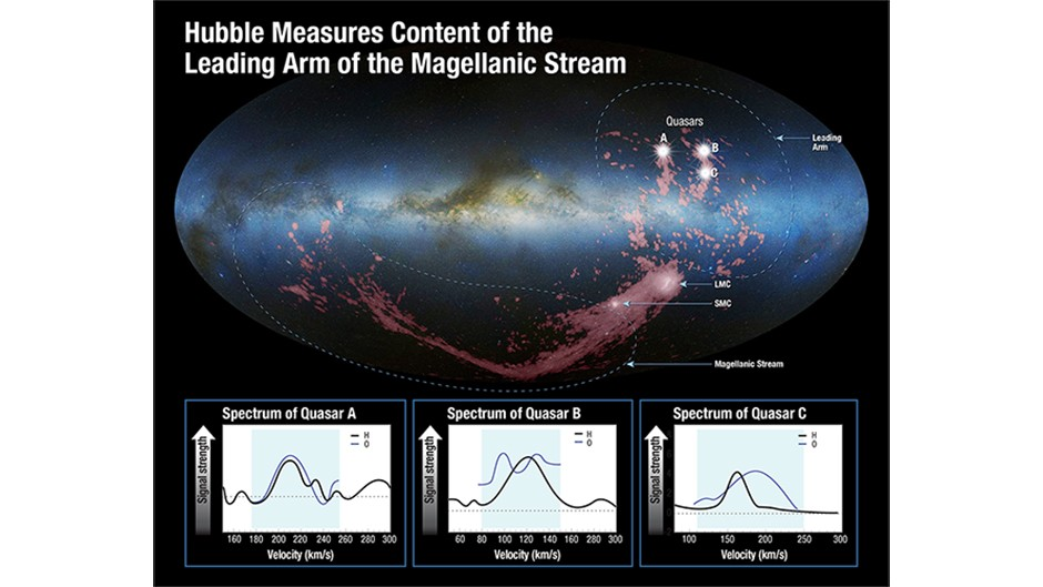"""This is a photo mosaic of an edge-on view of the Milky Way galaxy, looking toward the central bulge. Superimposed on it are radio-telescope images, colored pink, of the stretched, arc-shaped Magellanic Stream below the plane of the galaxy and the shredded, fragmented Leading Arm crossing the galaxy's plane and extending above it. These gas clouds are being gravitationally pulled apart like taffy from the Small and Large Magellanic Clouds - satellite galaxies to our Milky Way - which appear as bright clumps within the gas.  The source of the ribbon-like Magellanic Stream was uncovered by the Hubble Space Telescope about five years ago, and it was found to come from both Magellanic Clouds. However, the source of the Leading Arm remained a mystery until today. Now, scientists have used Hubble's ultraviolet vision to chemically analyze the gas in the Leading Arm and determine its origin. Because they could not directly sample it, they instead used the light from seven quasars - the bright cores of active galaxies - to measure how it filtered through the Leading Arm's gas. These quasars reside billions of light-years beyond the Leading Arm and act as """"lighthouses"""" shining through the gas.Scientists looked for the absorption of the quasars' ultraviolet light by oxygen in the cloud. This is a good indication of how many heavier elements reside in the Leading Arm's gas. The team then compared Hubble's measurements to hydrogen measurements made by the Robert C. Byrd Green Bank Telescope in Green Bank, West Virginia, as well as several other radio telescopes. Marked locations indicate the three brightest of the seven quasars used to study thecomposition of the Leading Arm. Spectra for these three quasars are superimposed at the bottom of the graphic. The vertical axis of each spectrum indicates how much absorption is taking place. The more absorption, the greater the signal strength is. The horizontal axes indicate the velocities of the gas at different points. Blue boxes is"""
