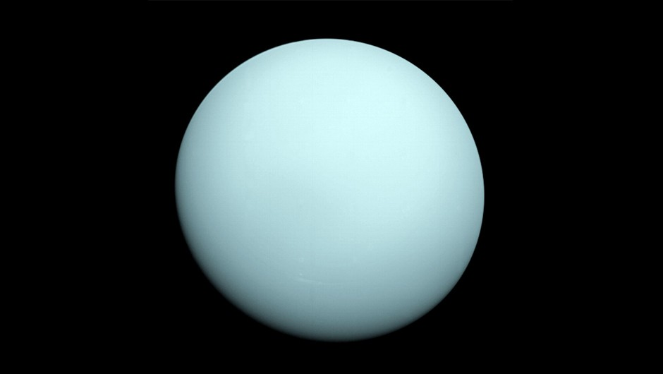An image of the planet Uranus taken by the Voyager 2 spacecraft in 1986.Credit: NASA/JPL-Caltech