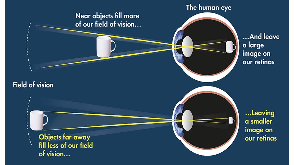 A basic understanding of how the human eye works helps explain the function of eyepieces So, what you need is a selection of eyepieces to match each of your different observing objectives.