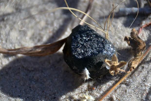 meteorite_botswana_main