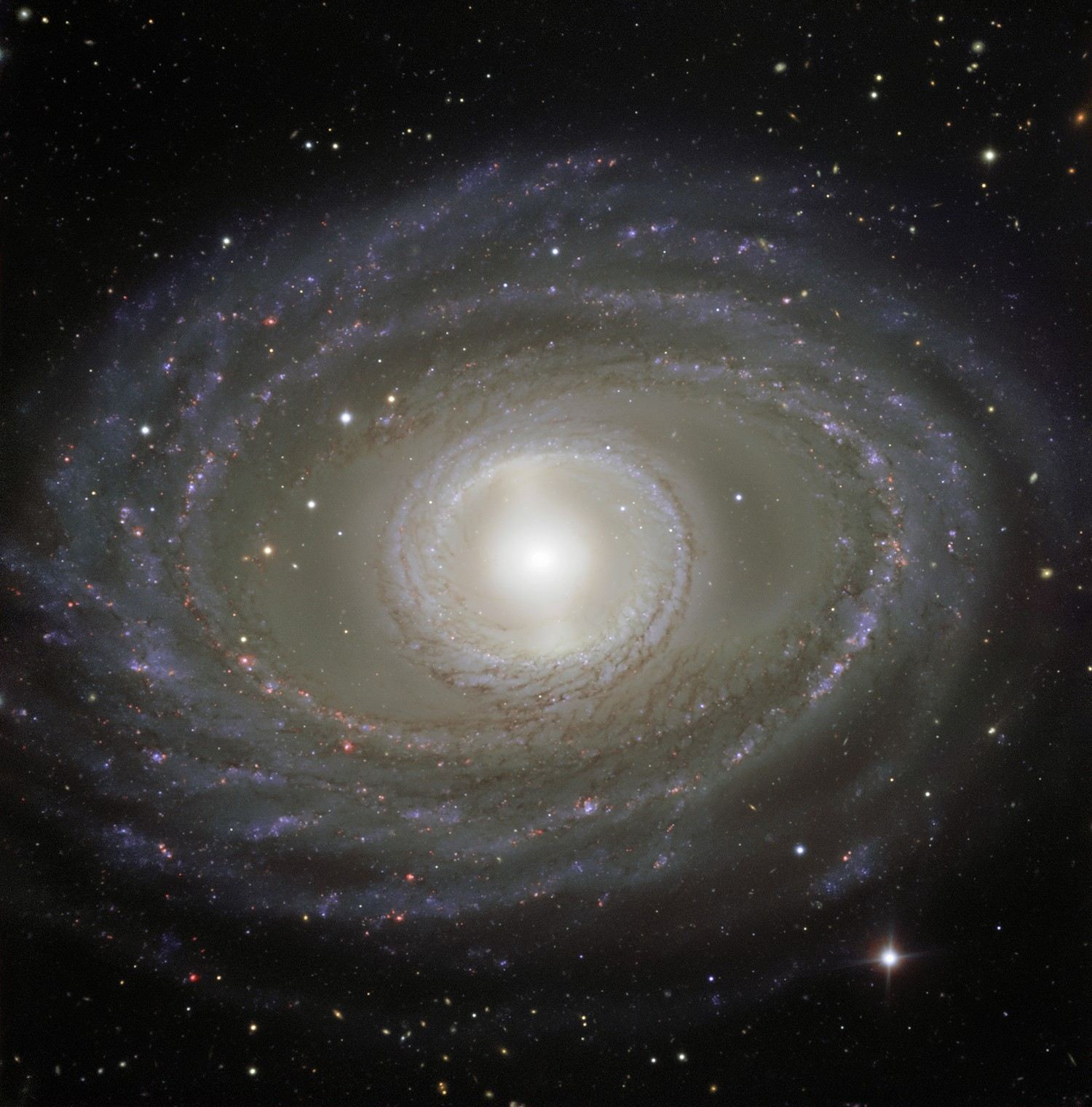 Galaxy NGC 1398, Very Large Telescope, 1 January 2018. Credit: ESO