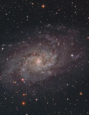 The Triangulum Galaxy Alec Alden, Colchester, 17, 18, 24, 25 November 2017 Equipment: Atik 383L+ mono CCD camera and Sky-Watcher Evostar 80ED refractor, ASI1600MM mono camera and Sky-Watcher 120ED Equinox refractor.