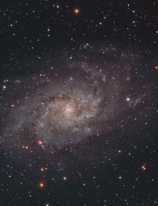 The Triangulum Galaxy Alec Alden, Colchester, 17, 18, 24, 25 November 2017 Equipment: Atik 383L+ mono CCD camera and Sky-Watcher Evostar 80ED refractor, ASI1600MM mono camera and Sky-Watcher 120ED Equinox refractor.