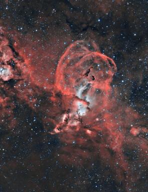 The Statue of Liberty Nebula, Rafael Compassi, Presidente Lucena, Brazil, 5 March 2019 Equipment: ZWO ASI 1600MM-C mono camera, William Optics FLT Fluoro Star 132mm f/7 triplet apo refractor.