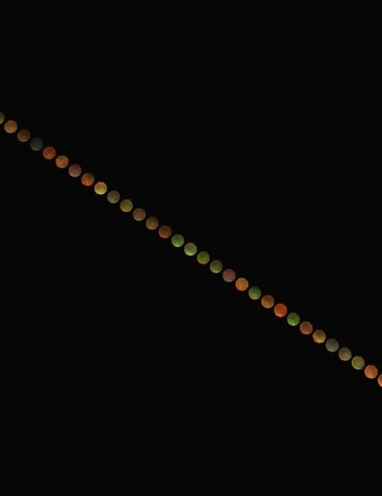 "Amanda Cross, Lancashire, 4 April 2017  Amanda says: ""The finished piece is made of single images taken 25 seconds apart, slightly out of focus with a high ISO and a low shutter speed to pick out colour variations. Our atmosphere refracts the star's light just like a prism splits sunlight. When a star is close to the horizon we are looking at it through a thicker part of the atmosphere, which creates more of the scintillation and flashes of colour that we can see.""  Equipment: Canon EOS 7D Mk II DSLR camera, 300mm lens."