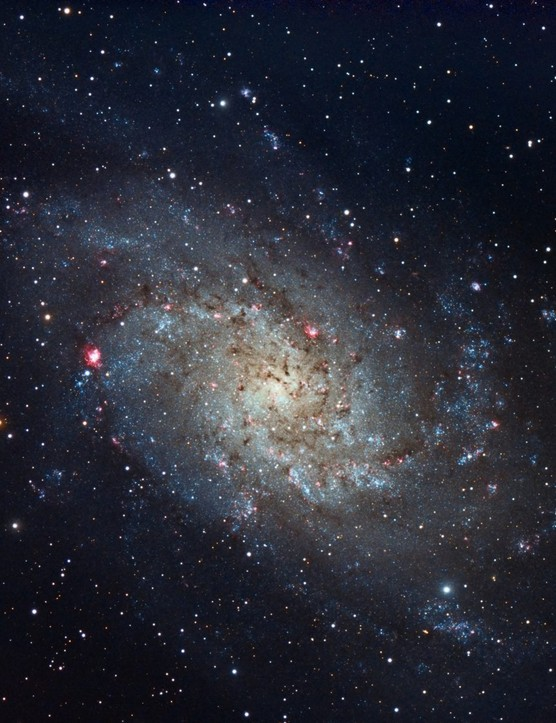 Triangulum Galaxy, Gary Opitz, Rochester NY, US, 6 October 2016. Equipment: ZWO ASI 1600MC cooled camera, Telescope Engineering Company APO140 ED refractor, Orion Atlas mount.
