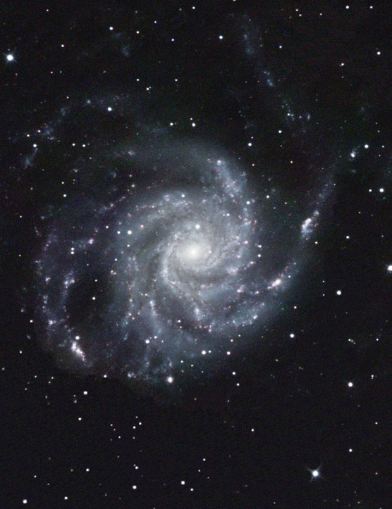 Pinwheel Galaxy, Mark Griffith, Wiltshire, 20 January 2017. Equipment: Atik 383L+ CCD camera, Teleskop Service 12-inch Ritchey-Chrétien telescope, Sky-Watcher EQ8 Pro equatorial mount.