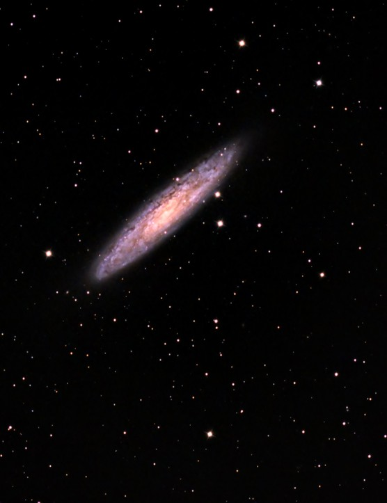 Sculptor Galaxy, Tom Bishton, Brisbane, Australia, 3 September 2016. Equipment: Canon EOS 600D modded DSLR camera, Sky-Watcher ED120 Pro apo refractor, Sky-Watcher AZ-EQ6 Go-To mount.