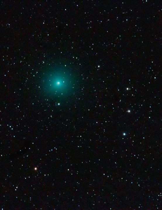 Comet Wirtanen  Peter Louer, Tenerife, 8 December 2018  Equipment: Canon EOS 600D DSLR camera, Canon 100-400mm lens, Sky-Watcher NEQ5 Pro SynScan mount.