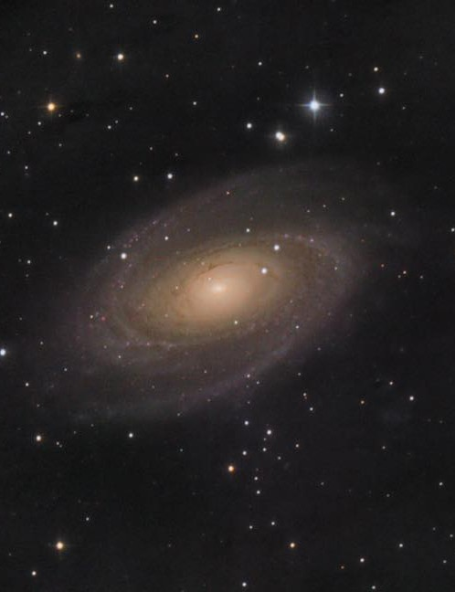 Bodes Galaxy, Carl Gough, West Sussex, 15 February 2019. Equipment: Canon EOS 600D DSLR camera, Orion 8-inch Ritchey-Chrétien, Sky-Watcher HEQ5 Pro SynScan mount.