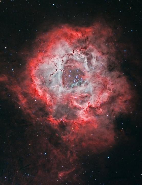 The Rosette Nebula, Jean M Dean, Guernsey, 25 February 2019. Equipment: Starlight Xpress Trius SX-814 CCD camera, Takahashi FS60CB refractor, iOptron CEM25EC GoTo mount.