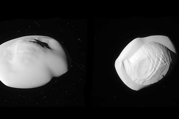 Saturnian moons Atlas (left) and Pan (right) look rather like cosmic ravioli! A new study has attempted to explain the reason behind their odd shapes. Image Credit: NASA/JPL-Caltech/Space Science Institute