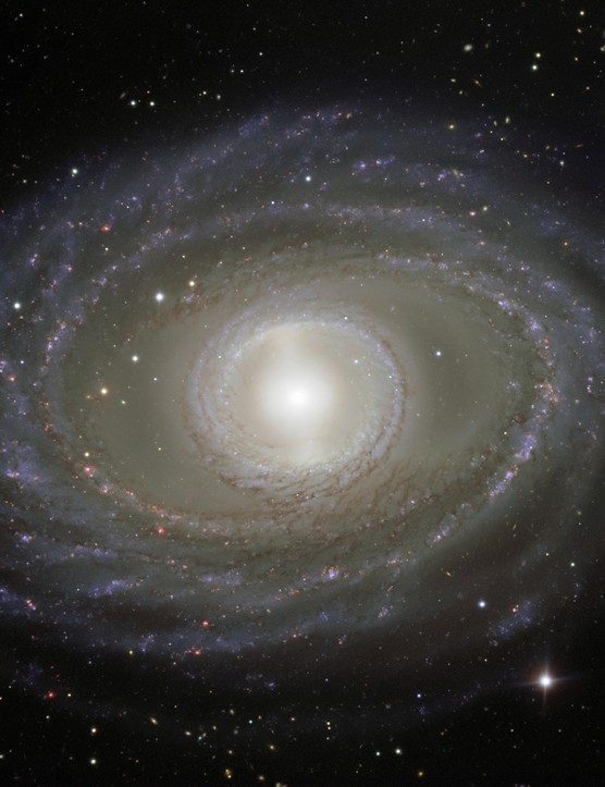 01 - Galaxy NGC 1398