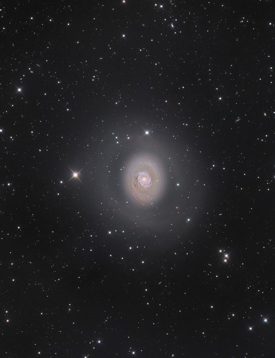 GALAXIES  M94: Deep Space Halo - Nicolas Outters (France)  Photo location: Castor Sirene Observatory, Provence-Alpes-Côte d'Azur, France  Equipment: Apogee Alta 16U 16803 camera, RCOS 12.5-inch Ritchey-Chrétien telescope, Paramount ME mount.