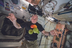 Astronaut Scott Kelly pictured on the International Space Station
