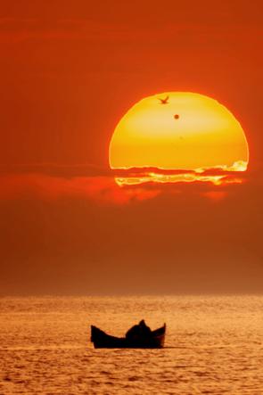 Venus Transit at the Black Sea © Alexandru Conu