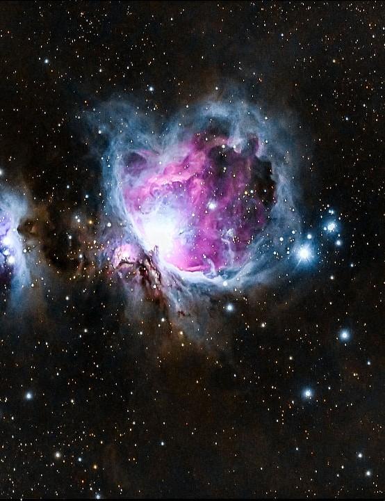The Orion Nebula William Brown, Coarsegold, California, US, 4 February 2019 Equipment: Nikon D7500 DSLR camera, Explore Scientific ED80 triplet apo refractor.
