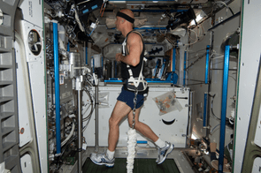2 June 2013 - In the Harmony node of the ISS, European Space Agency astronaut Luca Parmitano exercises on the Combined Operational Load Bearing External Resistance Treadmill (COLBERT), technically named the Treadmill 2 and abbreviated as T2.