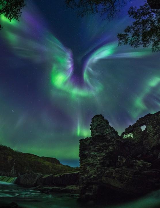 Aurora is a bird, Alexander Stepanenko, Murmansk Region, Russia, 10 September 2018. Equipment: Nikon D850 camera, 12 mm f/2.8 lens.