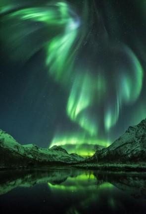 Aurora Bird © Jan R Olsen