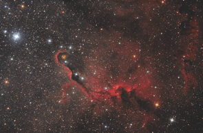 Best Newcomer. Elephant's Trunk Nebula with ananas: Lorand Fenyes