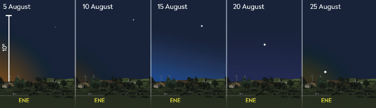 Appearance of Mercury relative to the horizon at 05:20 BST (04:20 UT) during August 2019, as viewed from the centre of the UK. Credit: Pete Lawrence