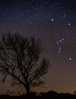 Bright Orion Andrew Allan, Dunning, Perth and Kinross, 27 February 2019. Equipment: Canon EOS 1300D DSLR camera, 18-55mm lens.