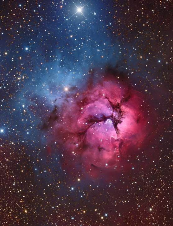 M20 Trifid NebulaSteven Mohr, Carrapooee, Victoria, Australia, 1 August 2017.Equipment: SBIG STXL-11000 camera, PlaneWave CDK 12.5 telescope, Astro Physics 900 mount. (IIAPY 2018 category: Stars & Nebulae)